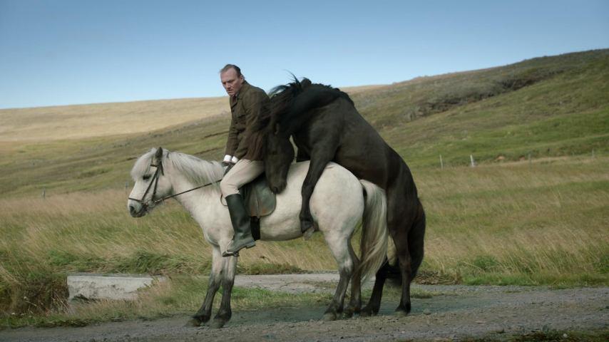 """Szene aus """"Von Pferden und Menschen"""" © NFP/Filmwelt"""