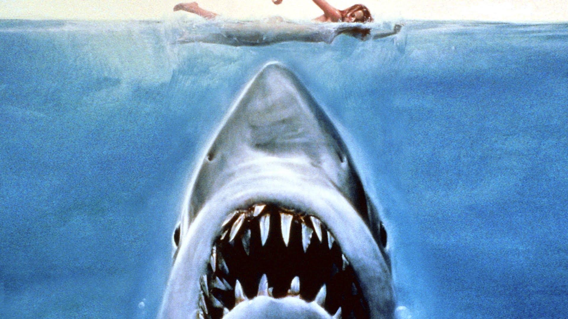 Weißer Hai Youtube
